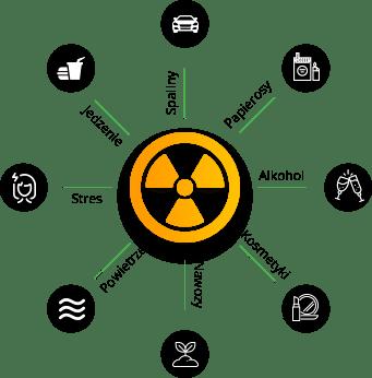 wpływ toksyn na organizm człowieka